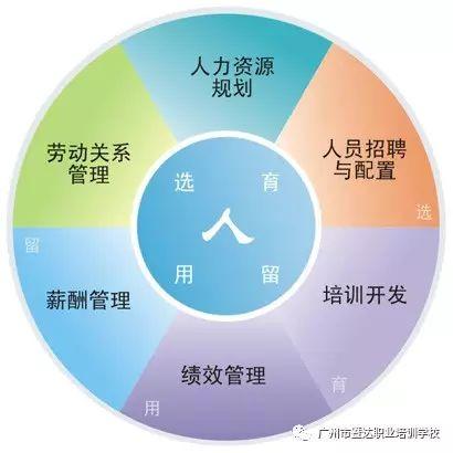 企业人力资源管理师 职业资格(图2)