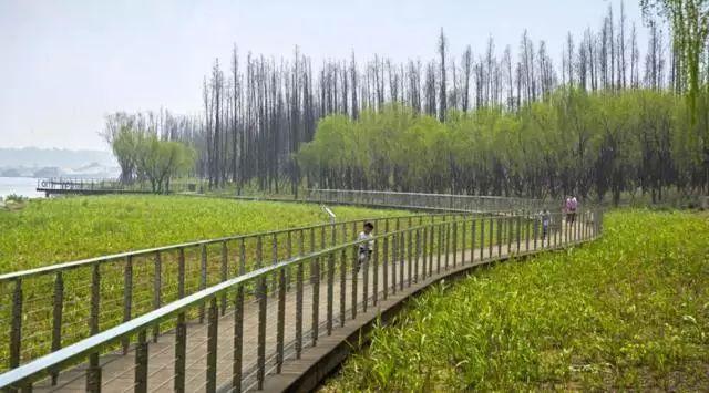 """""""ELA生态景观奖""""十佳案例宣布。 长沙有家公园[gōngyuán][gōngyuán]上榜"""