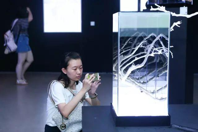 """2017年度""""青年艺术100""""北京启动展在京盛大开幕"""