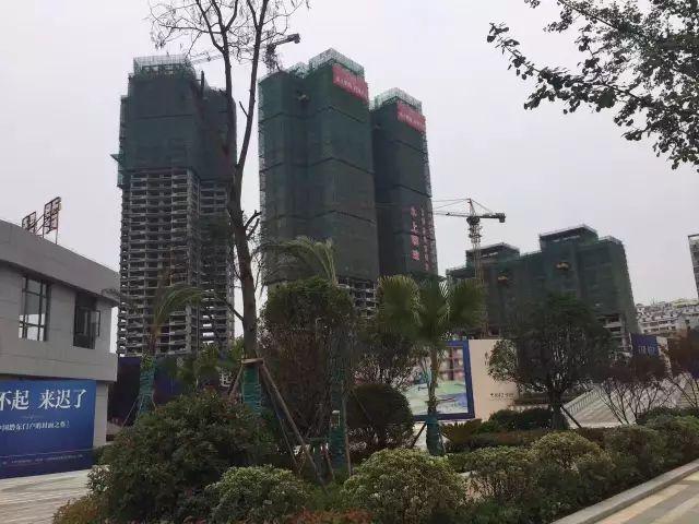 水上明珠全城揭幕,6月4日正式认筹