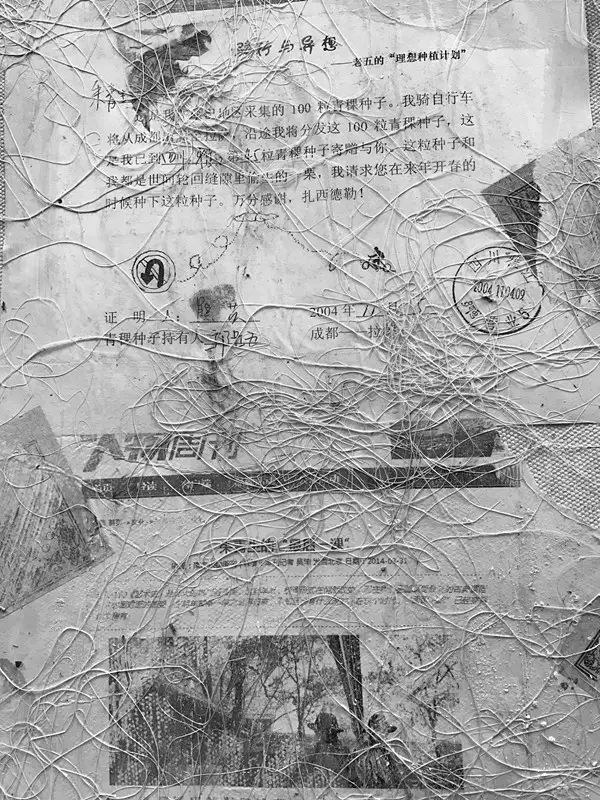 IMG_1005_副本.jpg