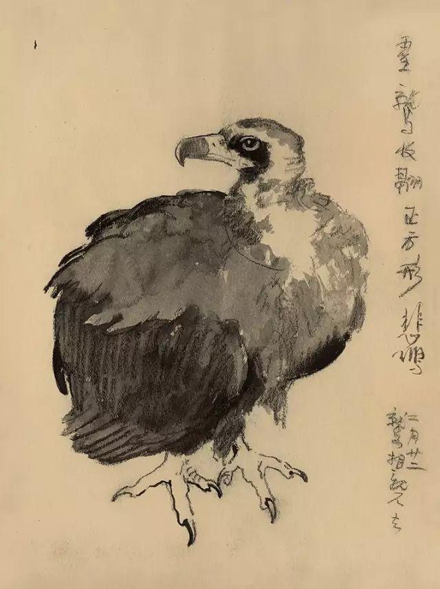 """""""中国现当代艺术夜场""""实现总成交额1.66亿元"""