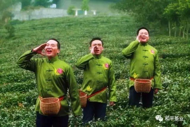 紫陽富硒茶產業