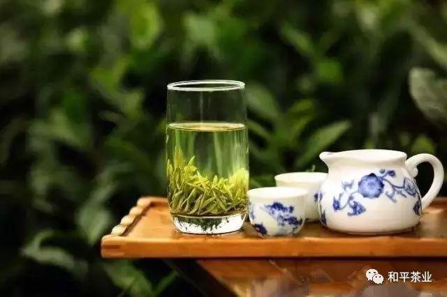 正宗紫阳富硒茶