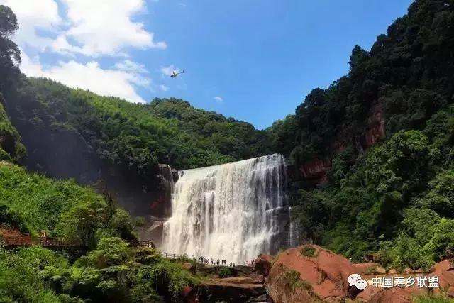 中国长寿之乡绿色产业发展联盟聚首赤水 论道康养旅游