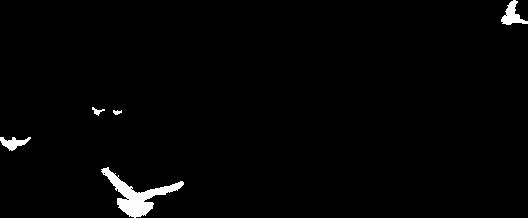 武漢加油眾志成城 齊心抗疫 致敬 追逐逆行的人為了支援武漢,抗擊新冠肺炎,響應黨中央和國務院的號召部...