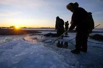 冰城培训班