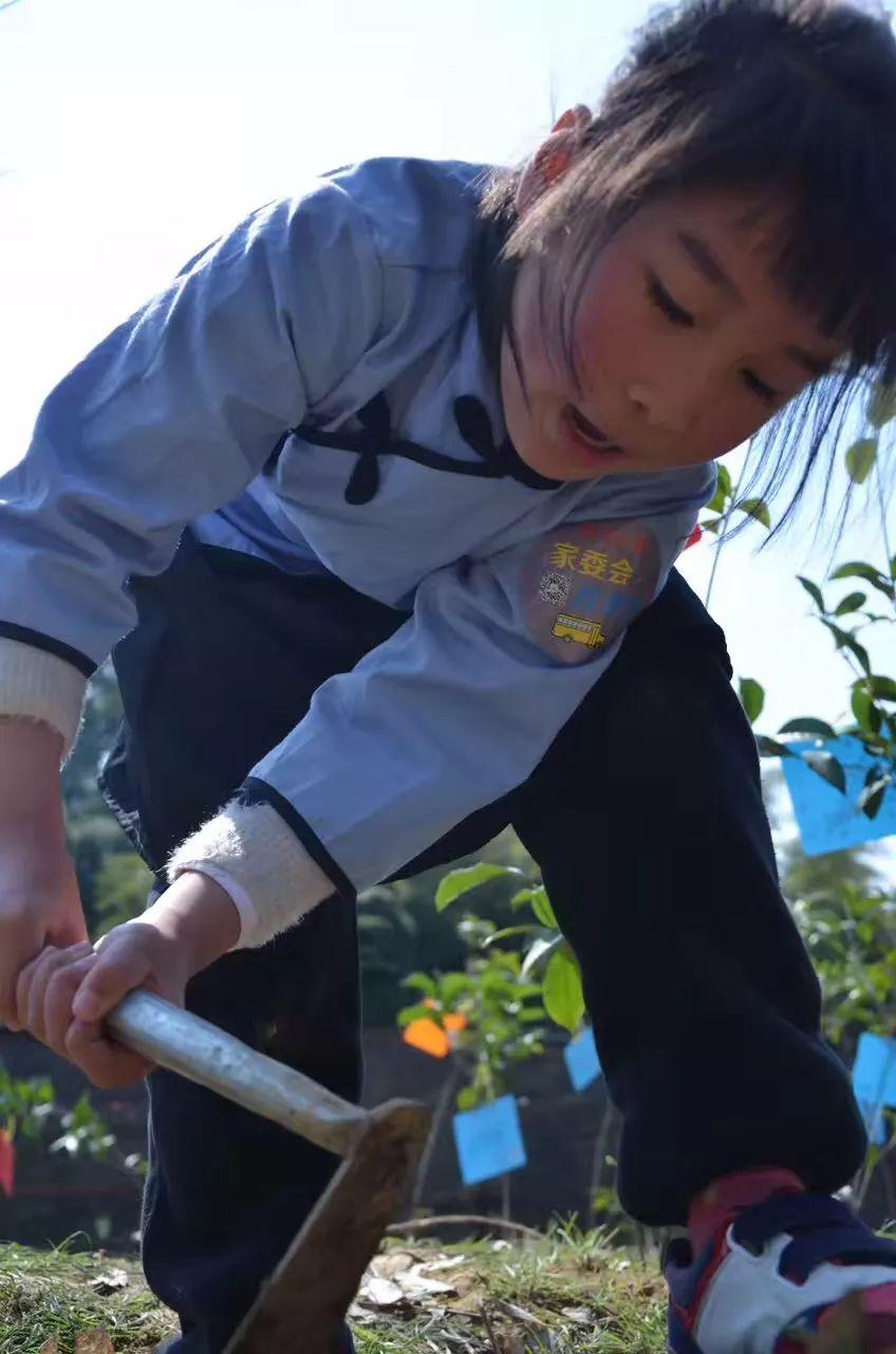 2018莫干山1932第三届亲子植树节开始招募啦,一起为莫干山种植绿色的梦想(植树,挖笋,野炊,果蔬烘焙