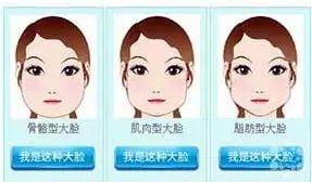脸大的类型