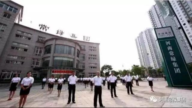 许昌媒体常绿品牌行,共鉴24载品牌实力