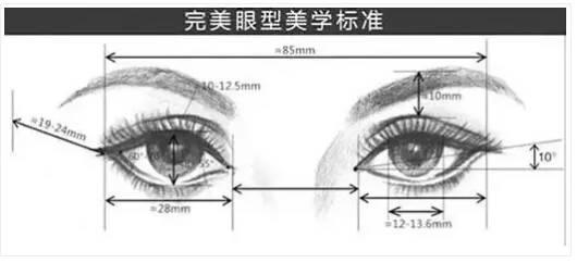 眼型美学标准